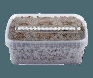 View Kits de cultivo de setas alucinogenas